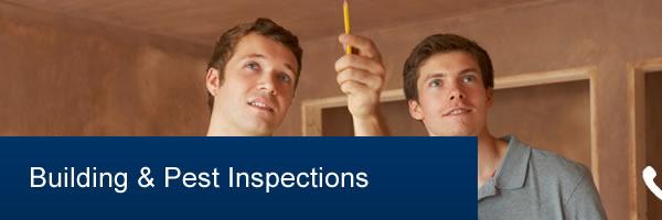 Affordable Building & Pest Inspection Brisbane