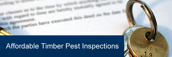 Affordable Pest Inspection Services