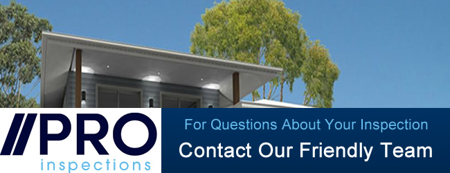 Get Advice On Your Building and Pest Inspection