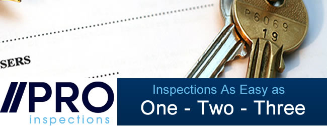 Building Inspections Made Easy