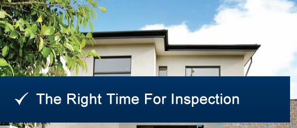 Right Time For Pest Inspection