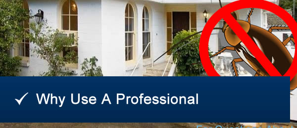 Why Use A Pest Inspection Company